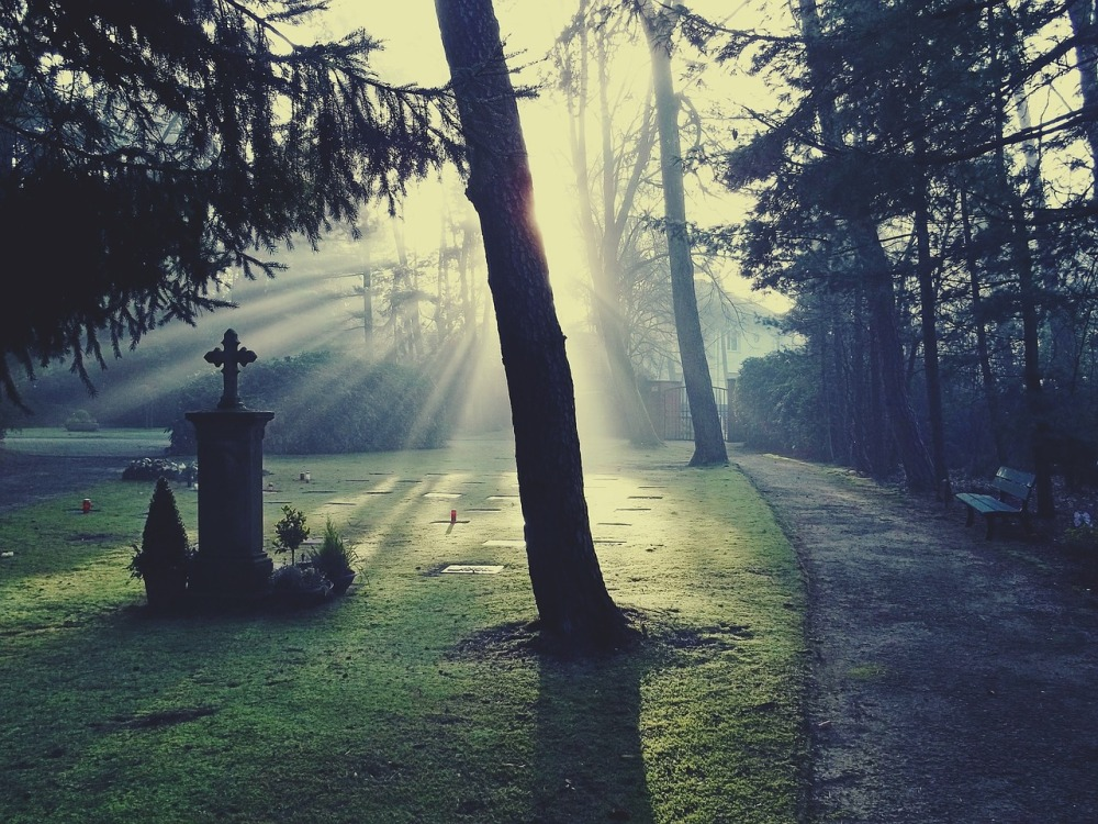cemetery-883417_1280